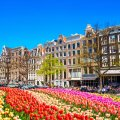 Best Places To Visit In Amsterdam Netherlands Zen Tripstar Amsterdam Vacation Travel Guide Amsterdam attractions Amsterdam travel guide