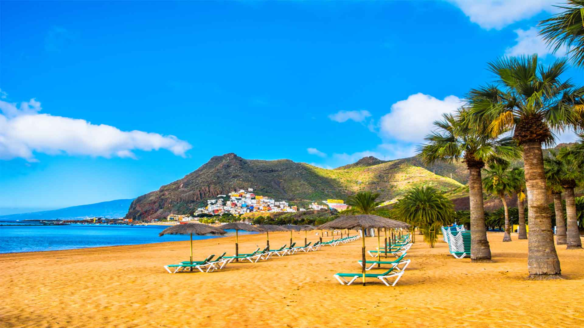The Ultimate Tenerife Vacation Travel Guide Zen Tripstar Santa Cruz de Tenerife Tenerife Canary Island Spain